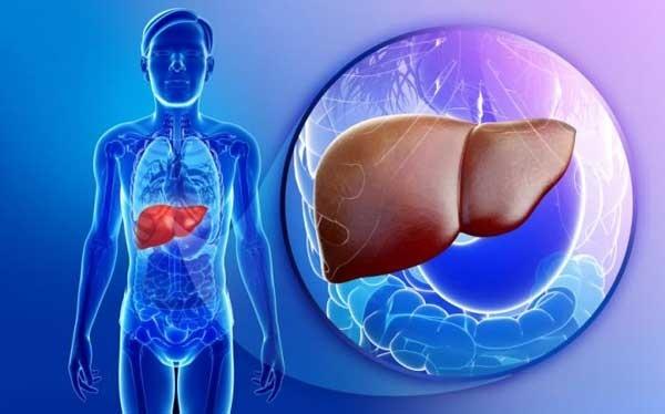 Bệnh nhân viêm gan C nên ăn gì, không nên ăn gì