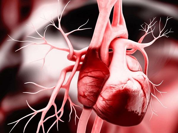 Bệnh suy tim sung huyết những điều bạn cần biết