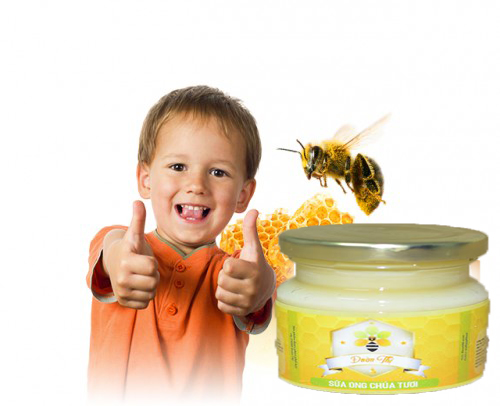 Trẻ em có dùng được sữa ong chúa không? Công dụng của sữa ong chúa?